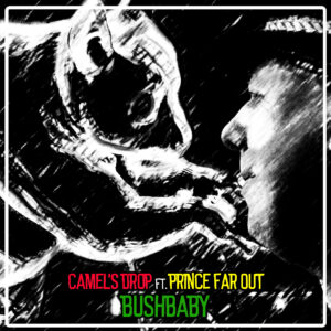 Camels Drop ft. Prince Far Out - Bushbaby